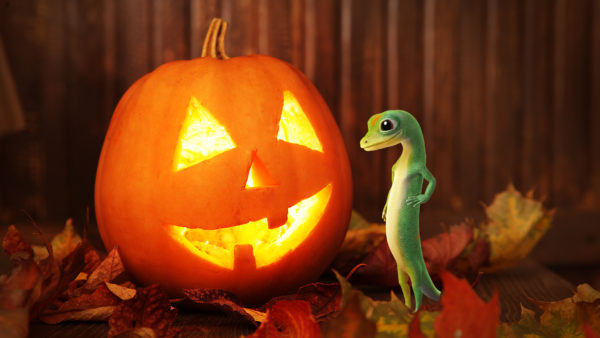 Gecko next to jack-o-lantern