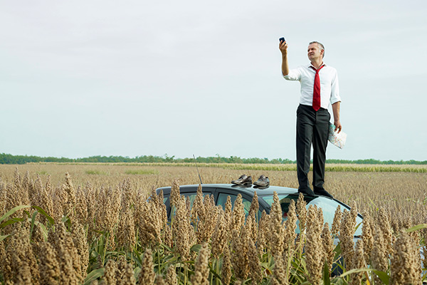 Man standing on car in cornfield trying to get cell reception