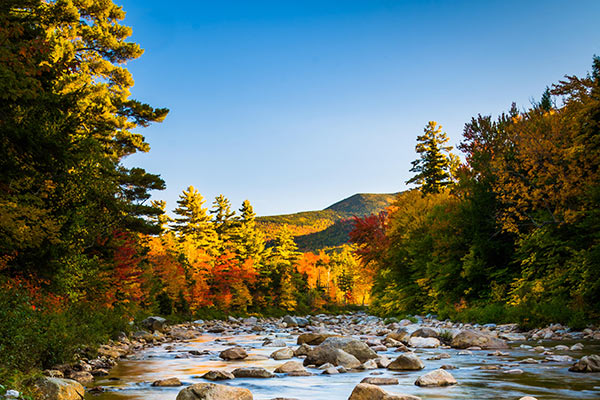 Autumn color along the Swift River, along the Kancamagus Highway in White Mountain National Forest, New Hampshire.