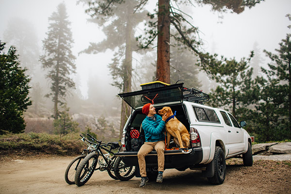 man and dog on truck tailgate in the woods