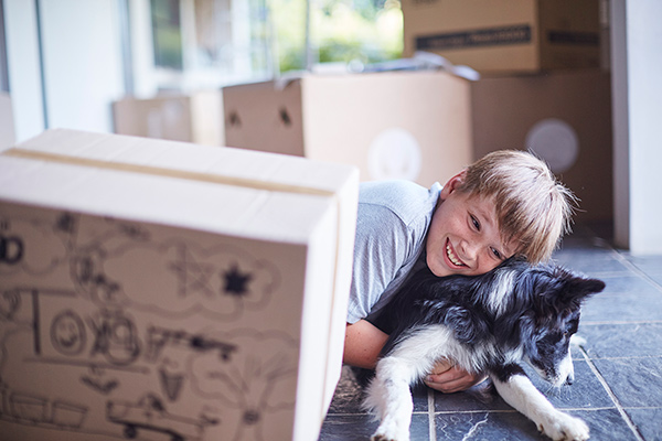 little boy with dog surrounded by moving boxes