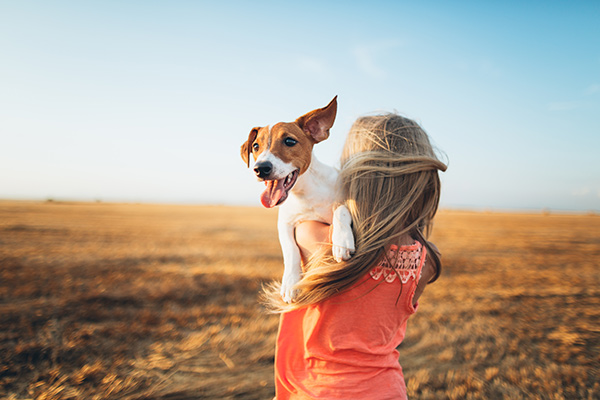 Girl holding Jack Russell terrier in a field
