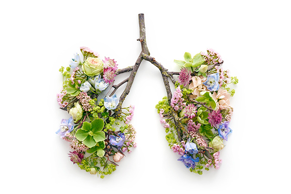 flowers shaped like lungs