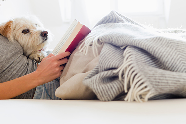 dog and woman reading a book in bed
