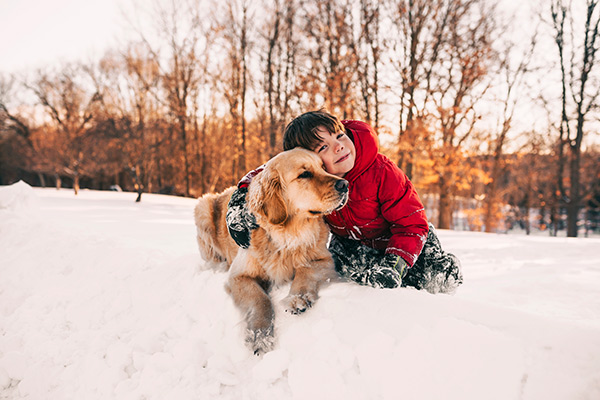 child and golden retriever sitting in snow