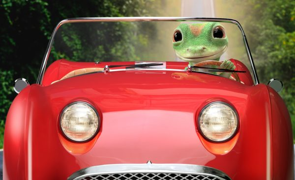 Gecko in convertible
