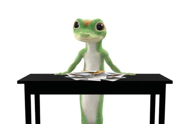 Gecko standing by desk piled with mail