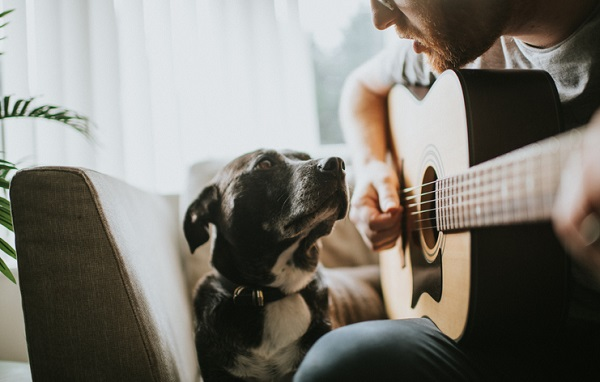 Man serenades his dog with guitar