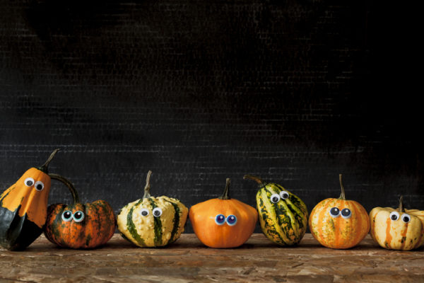 Seven ornamental pumpkins in a row against black background. Halloween themed.
