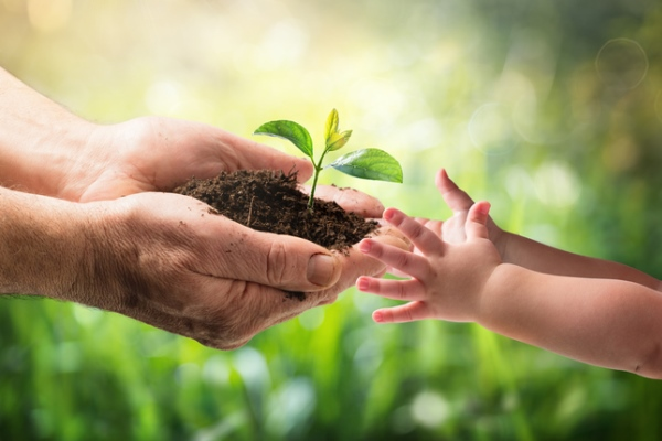 old man handing young plant to child