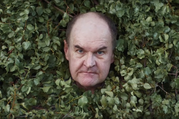 man peeking through hedge