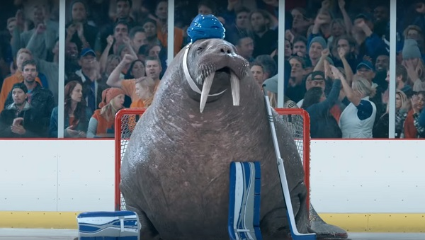 walrus hockey goalie