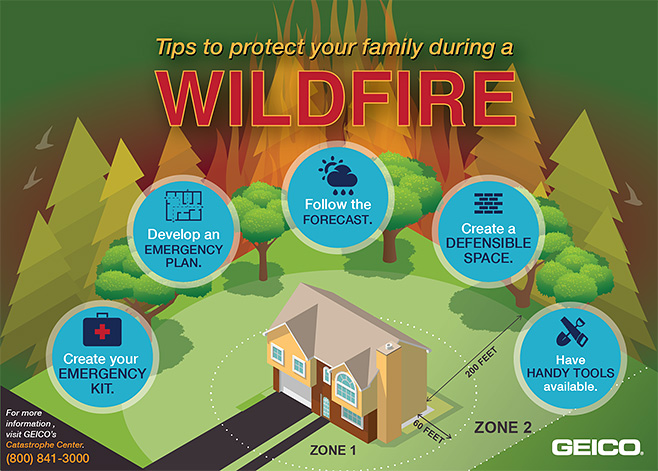 inforgraphic on wildfire