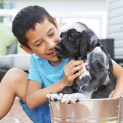 young boy giving puppy a bath