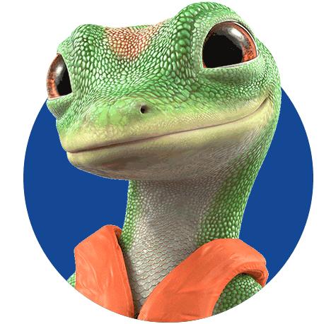 Gecko de GEICO | Kit GEICO de bote
