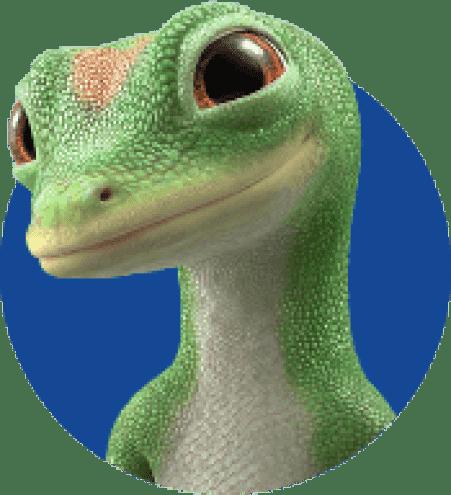 GEICO Gecko | Kit de motocicleta GEICO